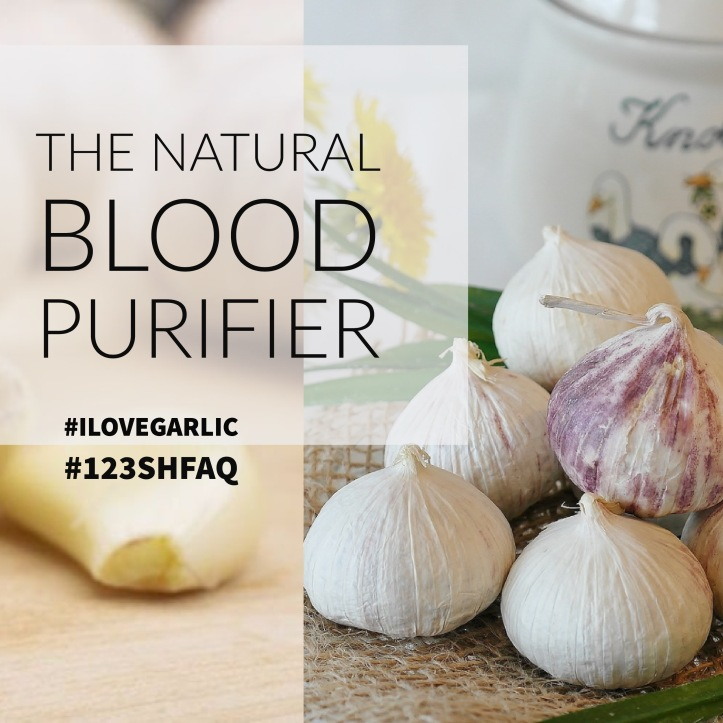 Garlic the natural blood purifier